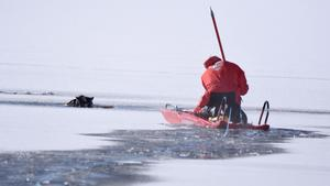 Omkring 200 meter ut i Vikarsjön tog sig den finska lapphunden innan isen brast. Foto: Jim Bäck/ Privat