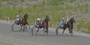 Travet på Björnvalla på lördagen drog cirka 300 besökare.