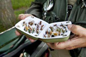 """SMÅ MÄSTERVERK. Inger • Svedvalls fiskeväska är full av askar med flugor som hon bundit själv, den ena vackrare och effektivare än den andra. Hon värderar hela sin fiskeutrustning till närmare 50 000–60 000 kronor. """"Men när man börjar duger det gott med det billigaste spöet i affären"""", säger Inger."""