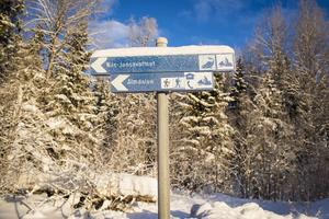 Från Lakavattnet, där bilvägen slutar, är det drygt 9 kilometer till Almdalen.