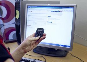 I mejlen uppmanas man att ange sina personliga koder och inloggningsuppgifter.