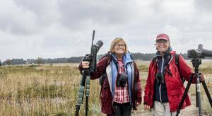 Anette Westin och Bodil Bernström stod intill en fågelsjö i Enköping när de plötsligt fick veta att en sällsynt gäst från Nordamerikafanns att beskåda i Stenö.
