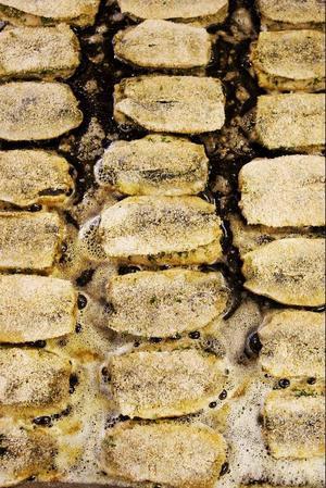 Cirka 300 strömmingsflundror steks som ett alternativ till dagens huvudrätt, kycklinggryta.