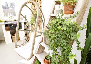 Stolsgunga i rotting, gammal stege och gröna växter.