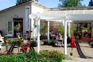 Trädgårdscaféet i Järvsö kommer nu att stängas för gott.