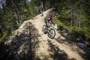 Lofsdalens bikepark erbjuder leder i olika svårighetsgrad, från gröna till svarta.