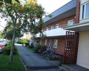 FLER LÄGENHETER. Tierpsbyggen vill bygga på en tredje våning på hyreshusen vid Mattiasgatan och Tegelbruksgatan för att skapa flera lägenheter i Tierp.