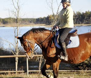 Lena och hästen Akribie kör ett träningspass på banan.