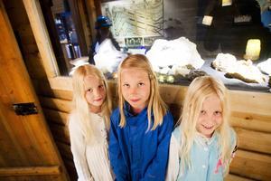 Isabelle, Thea och Gabriella Nilsson tycker om att besöka Losgruvan och titta på stenarna i utställningen.