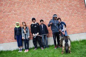 Totalt deltog 75 grundskoleelever från Vattudalsskolan i femkilometersloppet. Bland dem sex elever från 6-9:an som läser i en förberedelseklass.