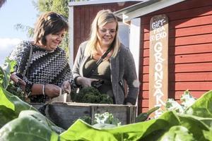 Marie Jonsson och Ann-Sofie Sörlin fyndar bland grönsakerna.