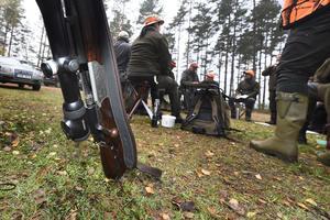 Fler tar jägarexamen och fler får licens för jaktvapen. Samtidigt är det allt färre som löser statligt jaktkort som är obligatoriskt för alla som jagar i Sverige.