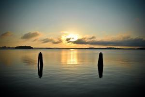 Tagen tidigt en morgon ute på johannesberg!ca kl0500 den 16/7.
