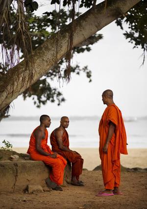 Munkar i samspråk. Buddhismen är en stor del av vardagen på Sri Lanka och munkarna har hög status.