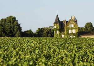 I Bordeaux är vingårdarna ofta pampiga och det finns gott om slott att besöka.   Foto: Dick Kenny/Shutterstock.com