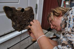 Väl rengjord från all bottenlera kom en vacker träbit fram som nu blir till konst i holländska skulptören Kim Buismans händer.