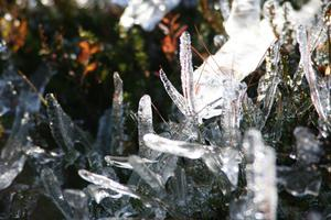 Islandskap på Östfjället i Sälen 26 september. Efter regn i två dagar blev det en frostnatt och hela fjället skimrade av iskristaller i solskenet.