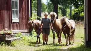 Jorun Skagerberg i Ortala erbjuder att rida islandshäst. Hon är med i nätverket Ridled Roslagen, som i sommar erbjuder gårdar med övernattning, så kallad Bädd & box.