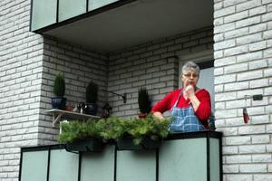 MYCKET PENGAR. För Siv Östblom i Söderfors är en höjd hyra med dryga 100-lappen för hennes trea mycket pengar då hon har en knapp pension.