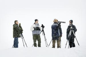 Hårdspaning. Lag Grågossarna, Bernt Jerlström, Ronnie Lindqvist, Tord Larsson och Åke Lorin, fäller upp mastodontkikarna och scannar av de snöiga vidderna kring Kvismaren.