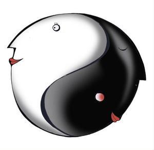 Hårt/mjukt. Aktivitet/vila. Kvinna/man. Udda/jämt. Mörker/ljus. Liten/stor. Kort/lång.Motsatsförhållandet kan man se överallt i stort och smått. Det ena behöver det andra enligt de kinesiska filosoferna. Myntet har två sidor och magneten har två poler. Balans mellan kontraster behövs för att harmoni ska uppstå i livet och i vår livsmiljö.