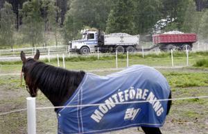 Det krävs en väldigt säker häst för att den inte ska reagera på ett nära möte med lastbilarna utefter vägen.