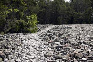 Klapperstensfält – som en stenöken mitt i skogen.
