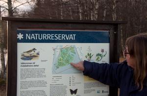 Elisabeth Nilsson visar  hur stigen går genom naturreservatet i deltat.