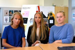 Gymnasieeleverna Alva Göransson och Tess Larsson, liksom Emma Wiklund  som tog studenten förra våren är bedrövade. Projektet som gjorde att de återvände till skolan avslutas i höst.