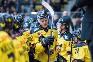 Niclas Lehmann har växt under hela säsongen. Centern var stor hjälte för Troja/Ljungby i fjol och är en av de spelare som ska visa vägen för VIK i jakten på en plats i Kvalserien till Hockeyallsvenskan.