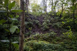 Herrgårdstippen eller barktippen som den också kallas är en av kommunens kända deponier där det är nedgrävt giftigt avfall.