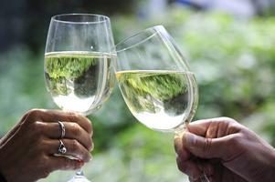 Idag finns ett EU-land där det är förbjudet med gårdsförsäljning av alkohol och det är Sverige. Det är inte rimligt och det hindrar utvecklingen i en växande bransch - som ofta har sin tillverkning på landsbygden, skriver debattförfattarna.