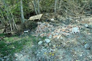 I bäcken hittade kommunens miljöskyddsinspektör plast som Bergs hyreshus skriftligen kommer att ombedas ta bort.Foto: Sandra Högman