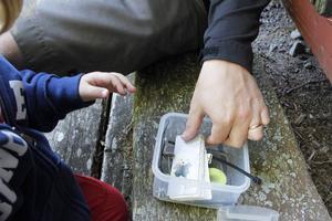 En cache är en behållare som alltid innehåller en loggbok - och oftast lite andra småsaker. I denna fanns bland annat en sten och en legogubbe.