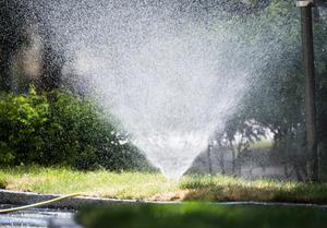Rekordvärmen har redan fått nivåerna att sjunka – bevattningsförbud infört många kommuner.