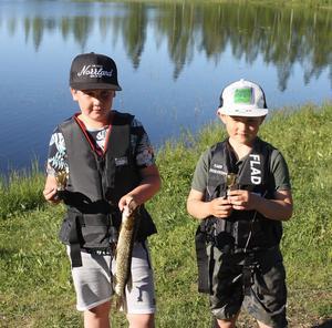 Ettan Joel Olsson och tvåan Leo Landzen med sina fångster.  Foto: Ulf Engström