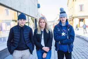 William Wengelin, Tuva Högberg och Tim Bergström tycker inte att Bollnäs är en särskilt fin stad.