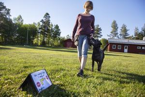 Sofia Nyberg och labradoren Doris gillar rallylydnad.