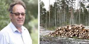 Kjell Andersson, skogskonsulent på Skogsstyrelsen, är kritisk och tycker att bolagen lämnar markägarna i sticket.