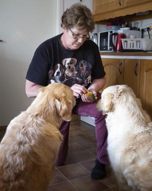 Med dosan i handen klickar Annika Östberg när hundarna Tasha och Ebba gör rätt.