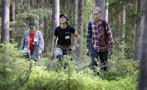 På spaning efter skyddsvärd skog. Fr.v. Monika Norberg och Maria Danvind, båda Naturskyddsföreningen, samt Ingemar Södergren, Rädda Skogen.