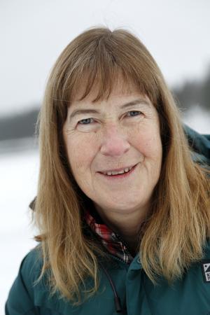 Lena Hedman har även tidigare gett ut bland annat boken Överlevnadsbok för glesbygdsbor. Hon har också arbetat för bland annat Utemagasinet och Svenska turistföreningens tidning Turist.