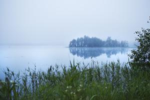 I närheten av Älgsjön hittades Tuula Lavikkala efter att ha varit försvunnen i sju månader.