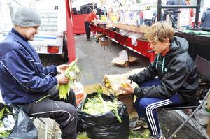 Benny och Bechir Elsgard skalar majs som ska grillas till hungriga flanörer.