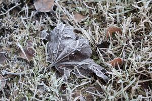 Det kalla vädret innebär frosthalka på flera håll i länet. Foto: Lise Åserud / NTB scanpix / TT