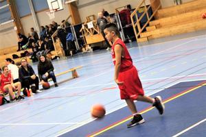 Mohsen Payande spelar för Tigers i Hudiksvalls BBK. Foto: Privat