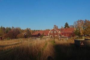 Exekutiv auktion Bebyggd lantbruksenhet om cirka 17 ha inklusive vatten belägen i Solleröns socken, Mora kommun. Foto: Kronofogden