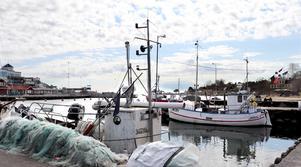 Vi är medvetna om att fiskerinäringen befinner sig i en ansträngd situation. Men om bestämmelserna om trålfiskegränsen ska ändras med effekt behövs det ett vetenskapligt underlag för detta i samråd med andra medlemsländer och ett beslut i EU, skriver Ulrika Falk, Hanna Westerén och Markus Selin.
