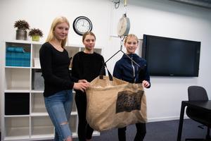 Liv Krantz, Line Skoglund och Soline Andersson med sin produkt Smart Hay. Att paketera hö ska bli lättare tack vare att galgen håller på påsen som sedan sitter på en våg.