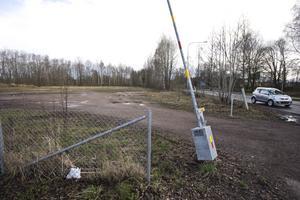 Sågplan i Krylbo kommer att undersökas ytterligare innan marken kan saneras.